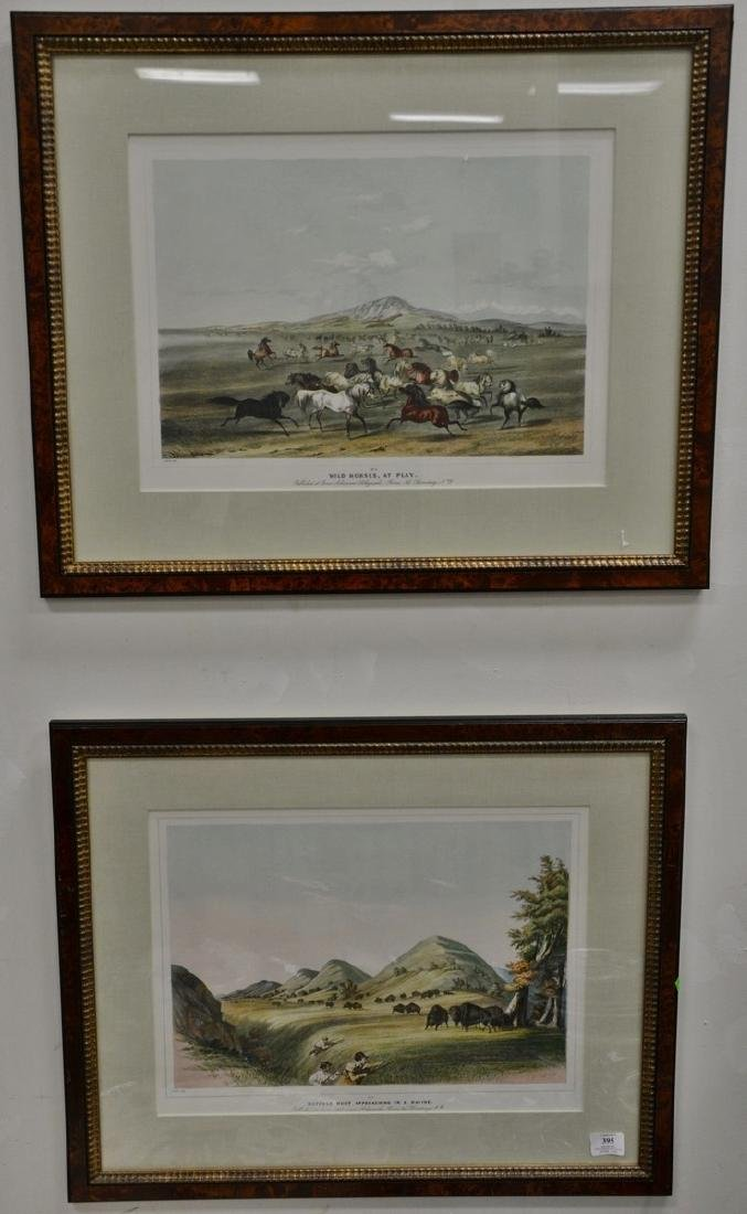"""After George Catlin (1796-1872), two prints, """"Wild"""