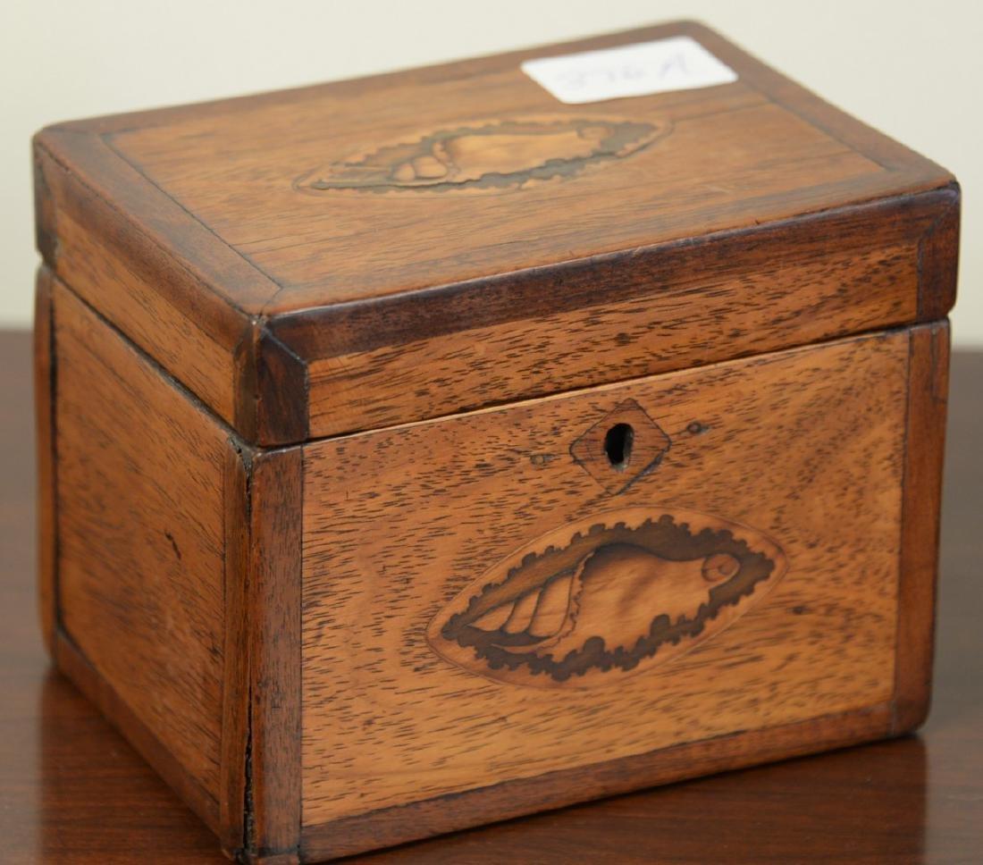 Mahogany tea box with conch shell inlay