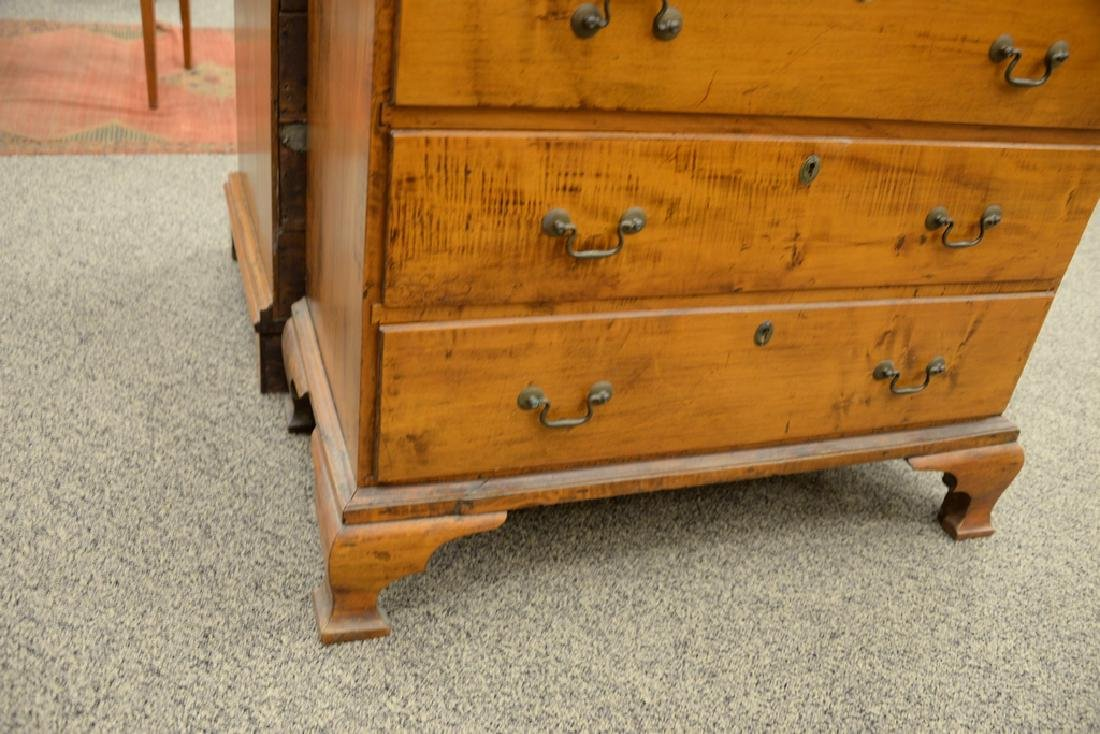 Chippendale maple tall chest having two over four - 3