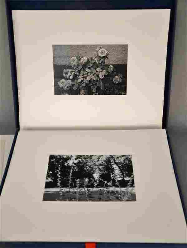 "Lee Friedlander (b. 1934), ""Photographs of Flowers by"