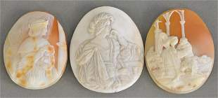 Three shell cameos 2 x 1 12 2 14 x 1 34 2 14
