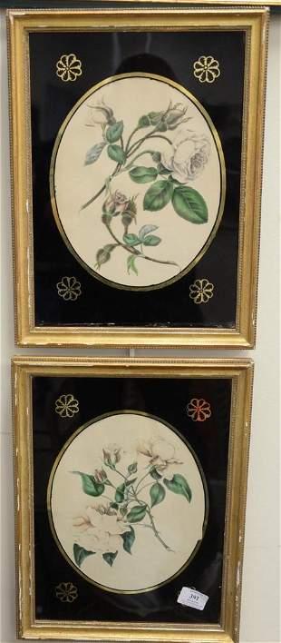 Seven Piece Group of Framed Botanical Prints, to