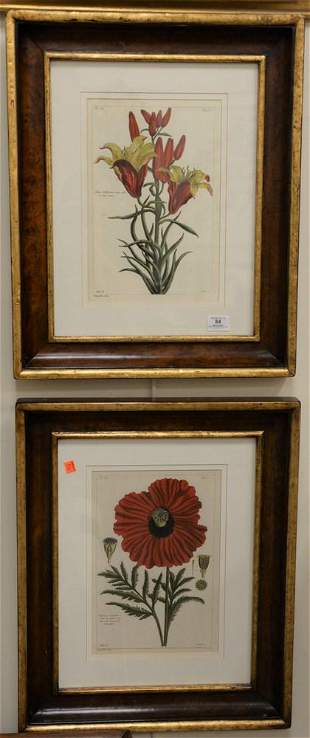 Six Piece Framed Group, to include four digital