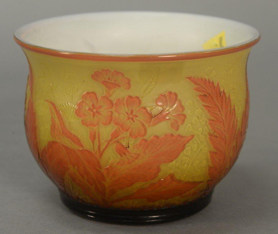 Webb cameo glass bowl, fern and flower design having