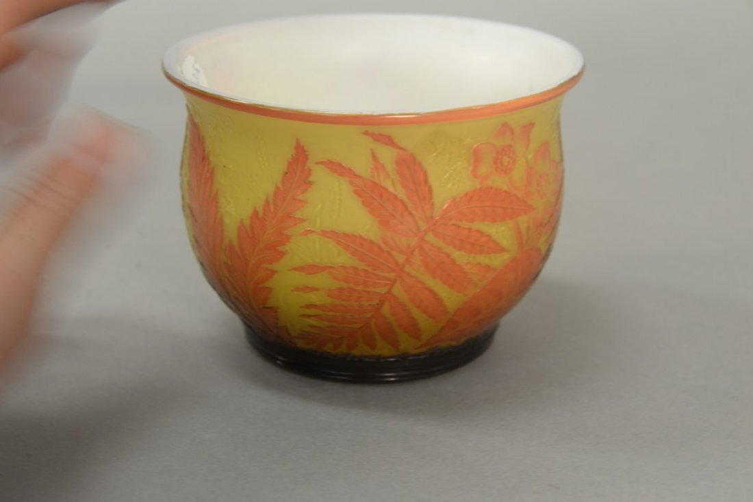 Webb cameo glass bowl, fern and flower design having - 2