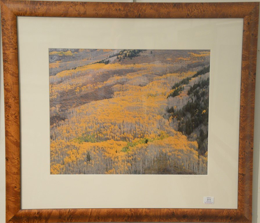 Christopher Burkett (1951)  Cibachrome  Elk Mountain