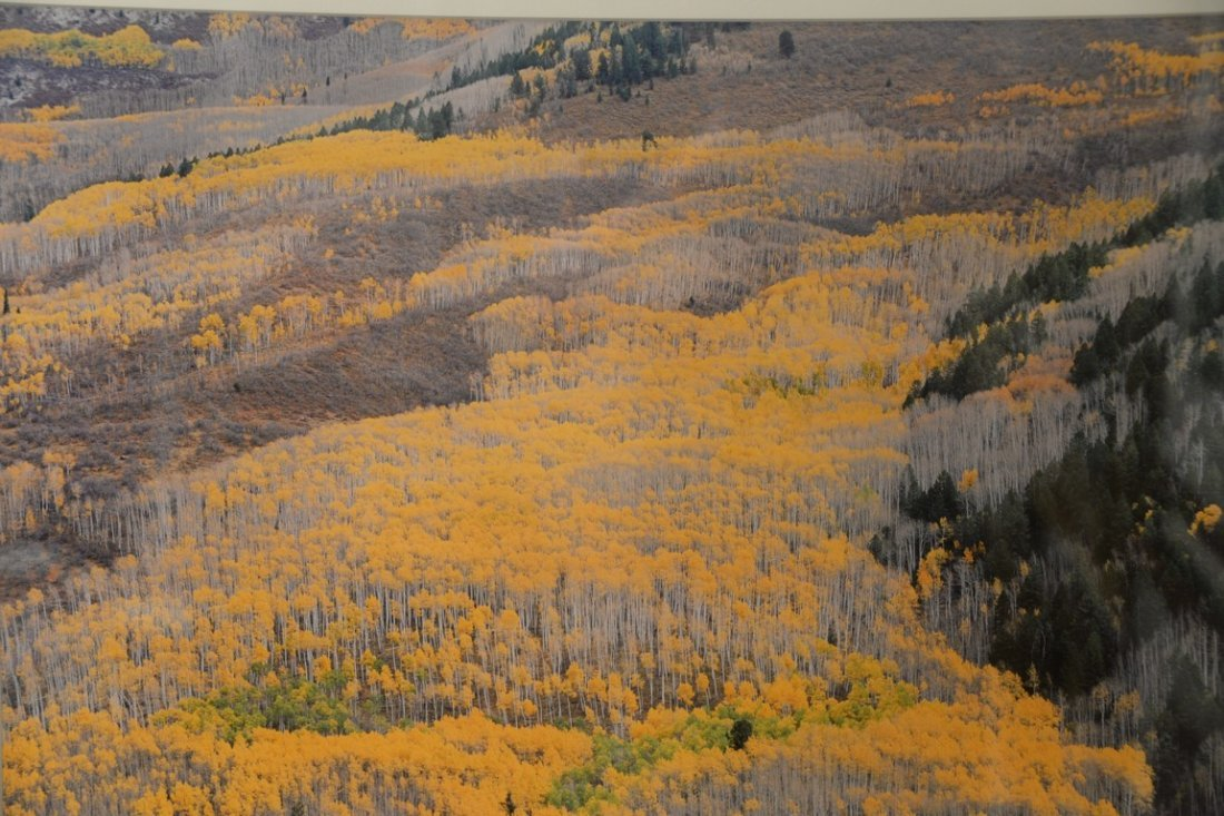 Christopher Burkett (1951)  Cibachrome  Elk Mountain - 3