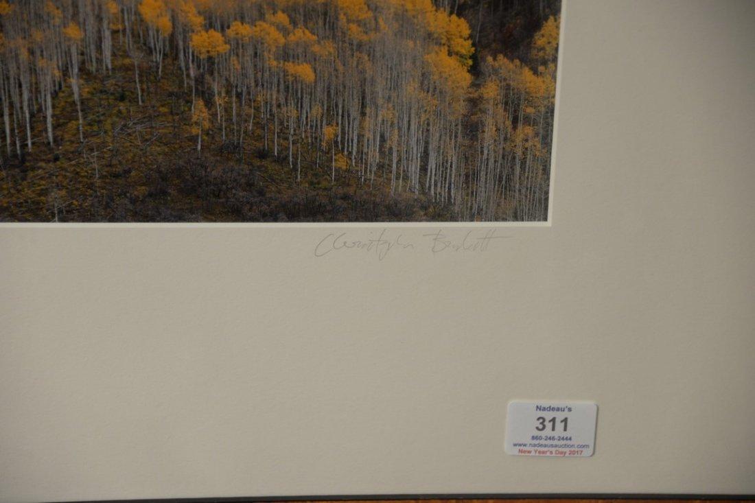 Christopher Burkett (1951)  Cibachrome  Elk Mountain - 4