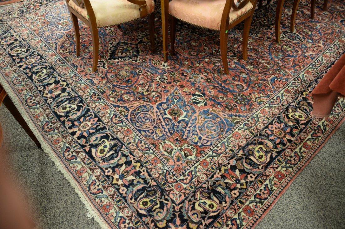 "Bahaktiari Southwest Persian Oriental carpet.  10'6"" x - 4"