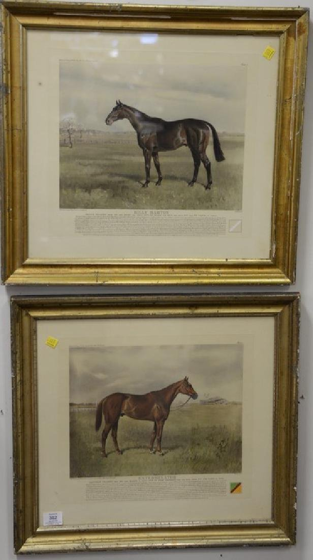 Pair of colored horse prints after Franklin Brooke Voss