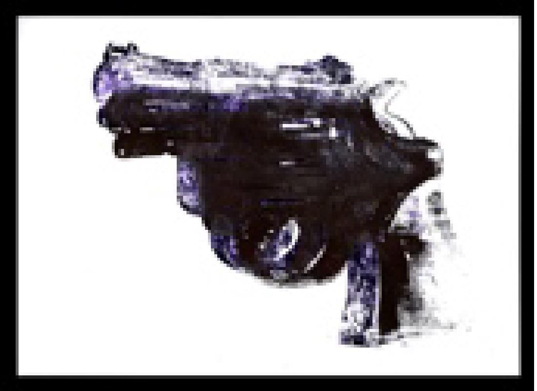 "Andy Warhol ""Gun"" Silkscreen"