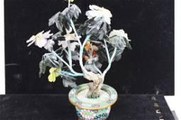 Jade Plants with Cloisonne Planter