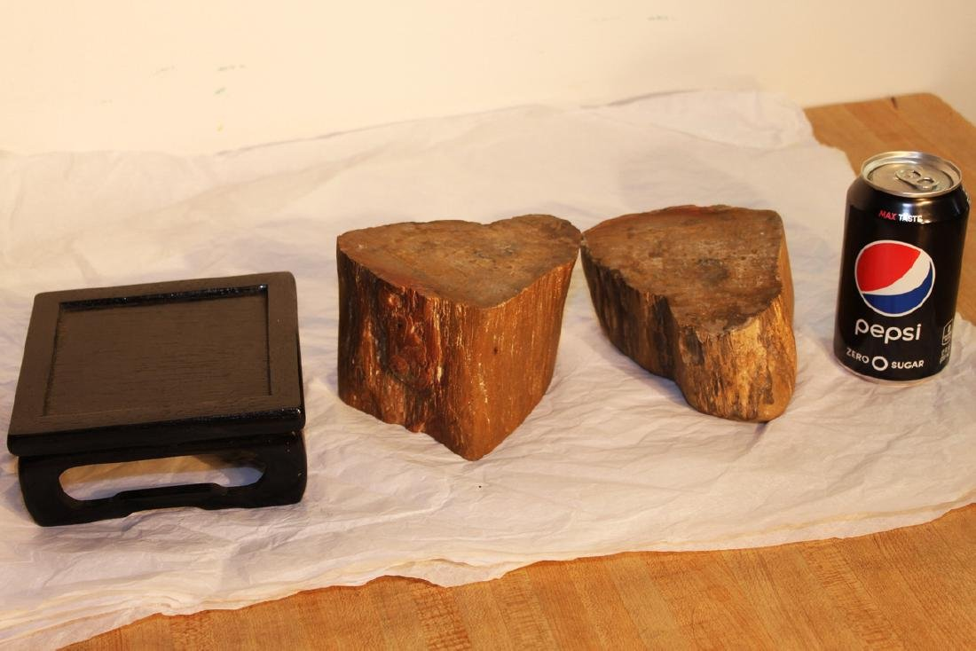 Two Pieces Fossil Wood on Wood Stand - 5