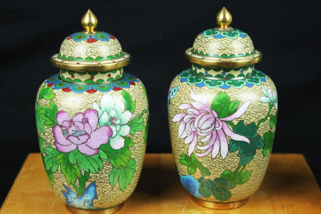 A Pair Chinese Cloisonne Vase - 2