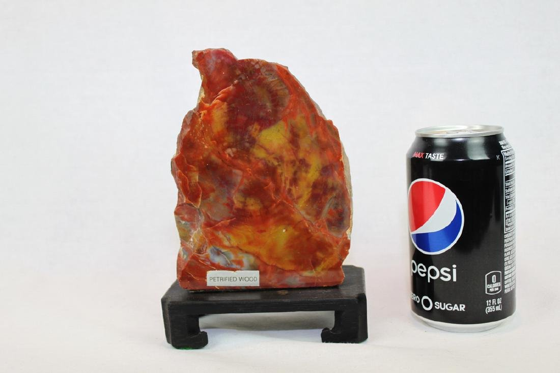 Petrified Wood - Red Stone/Rock with Wood Stand