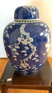 Antique Chinese Blue &WHite Plum Vase