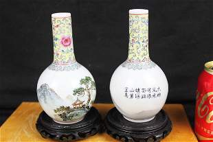 A Pair Chinese Porcelain Vase