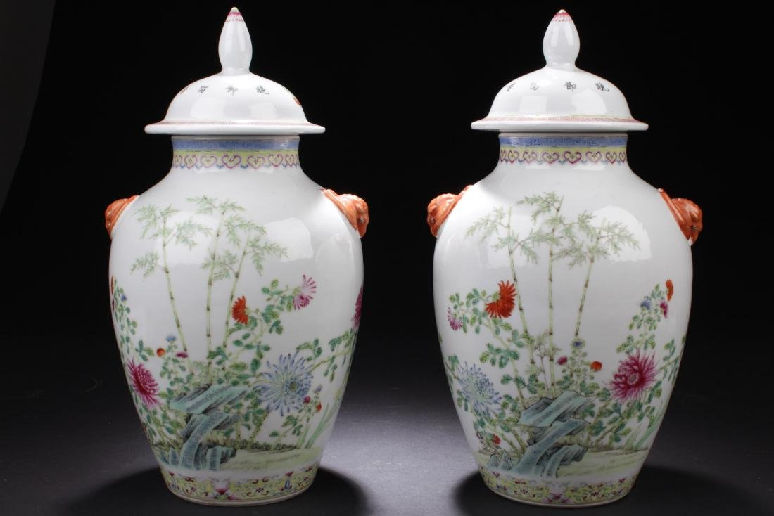 A pair of Chinese Antique Famille Verte Porcelain Jars