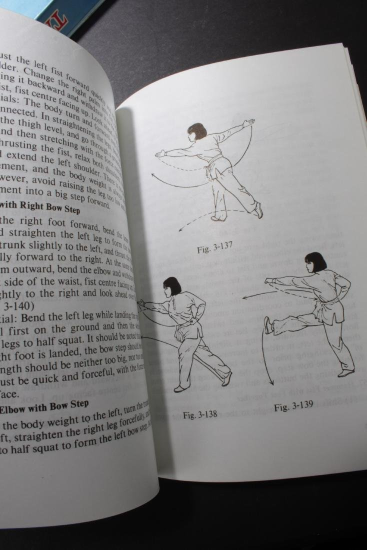 A Group of Four Chinese Books - 5