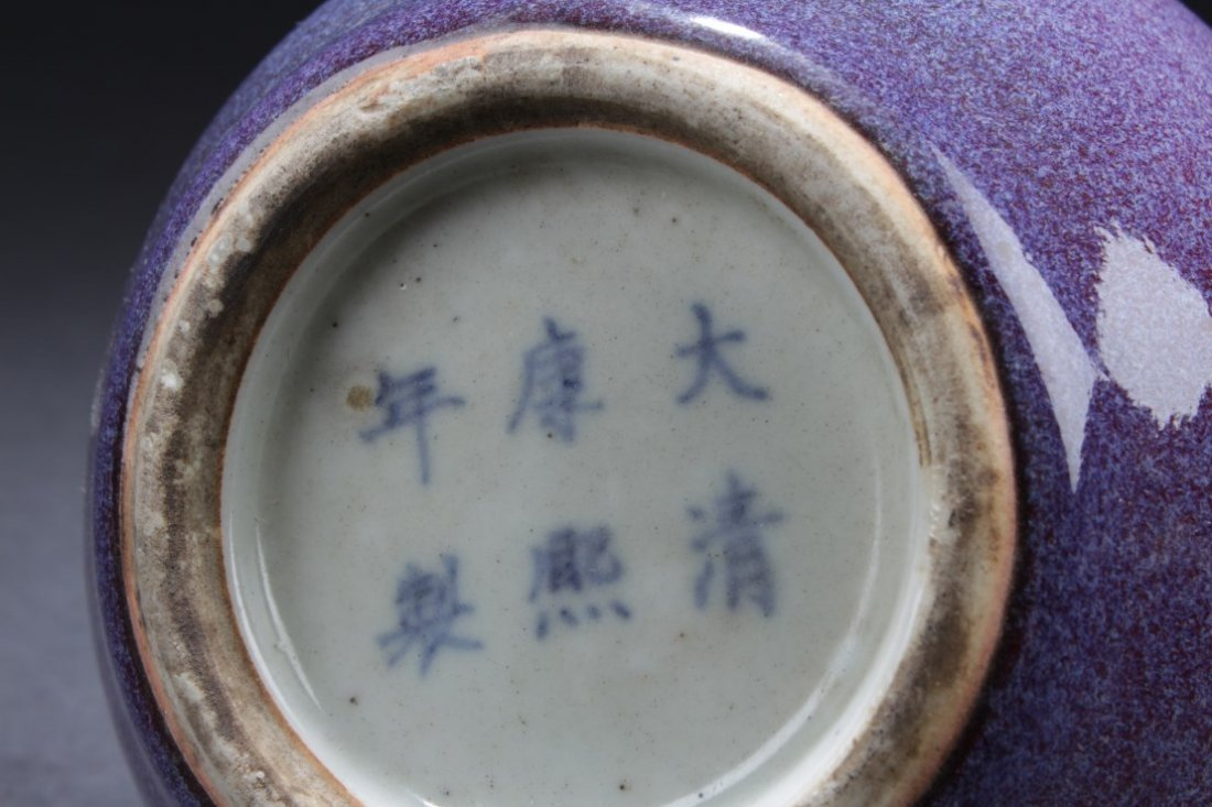 Chinese Glazed Porcelain Vase - 4