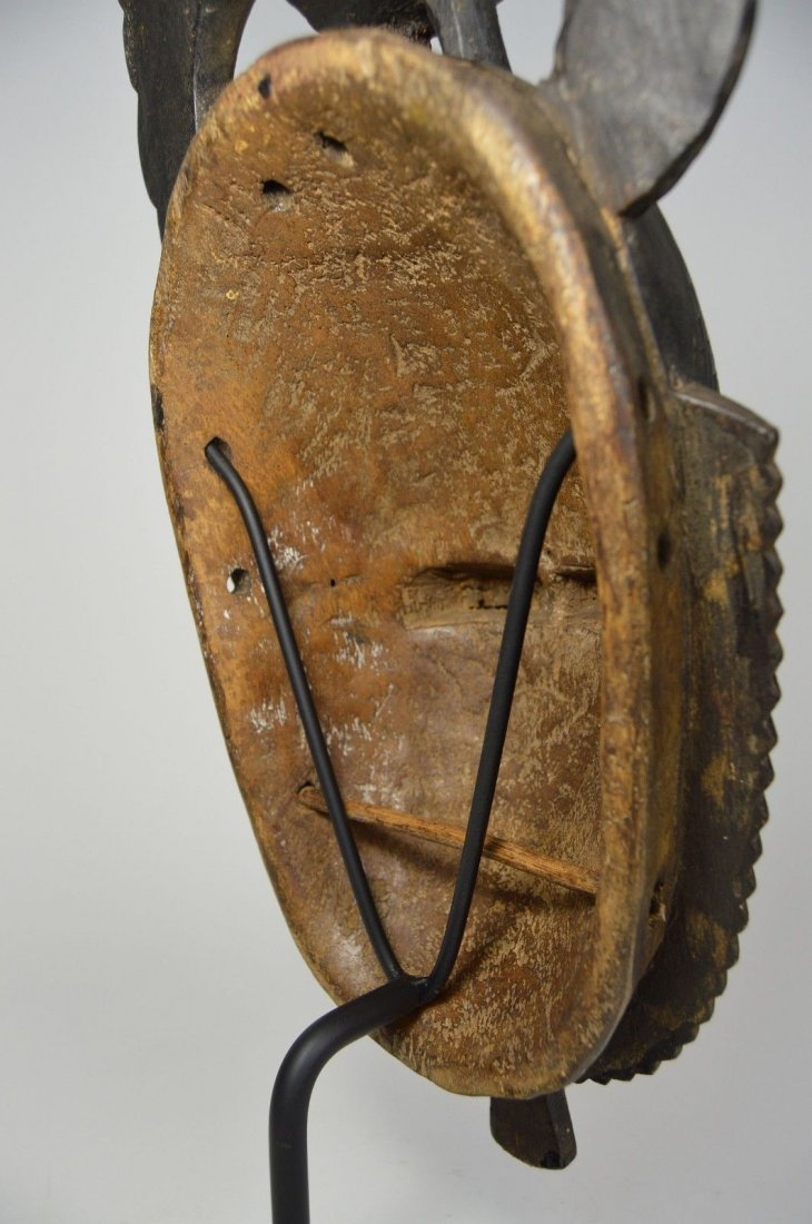 A Lovely Baule African mask with Avian finial - 6