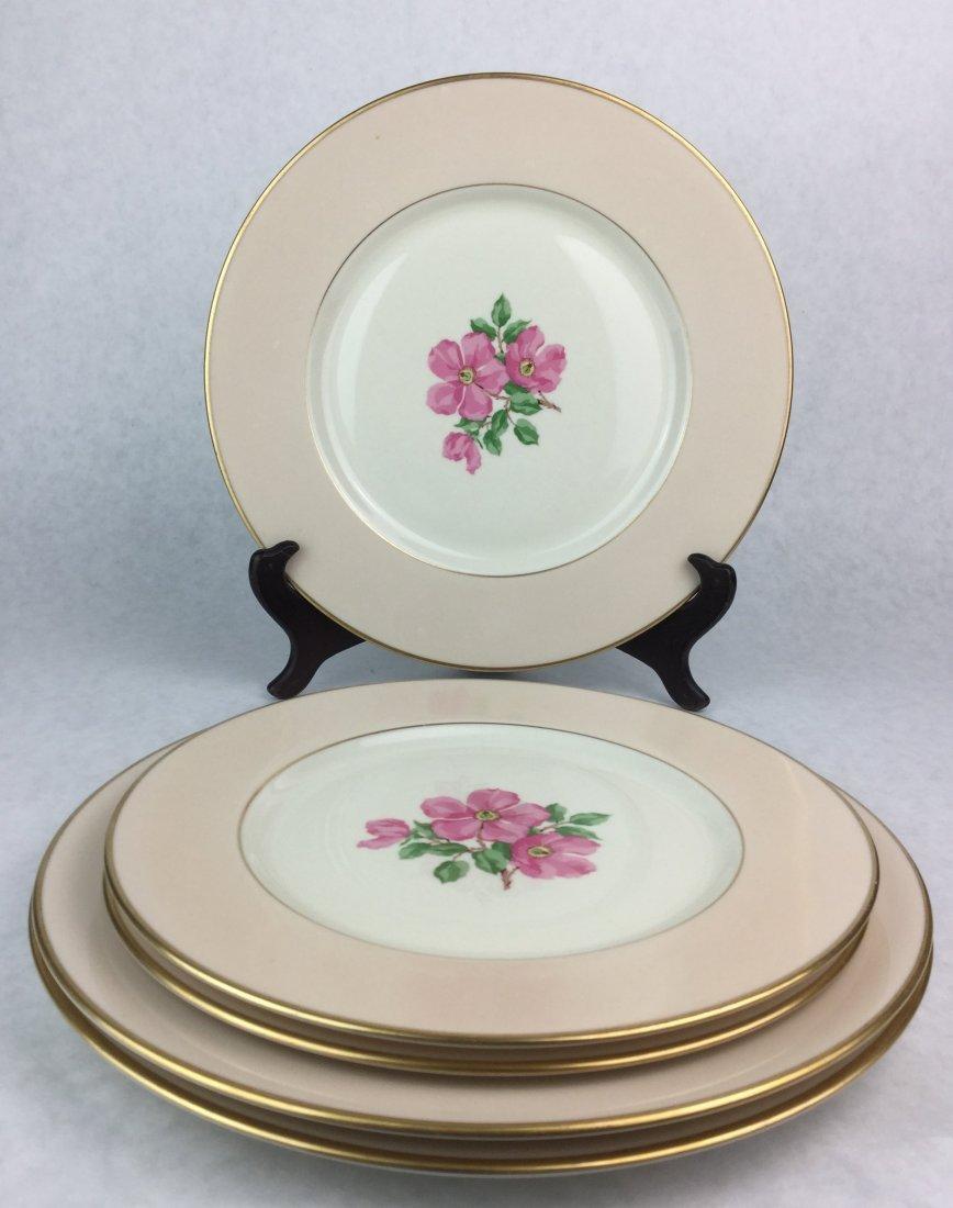 FRANCISCAN Porcelain Cherokee Rose Plate set