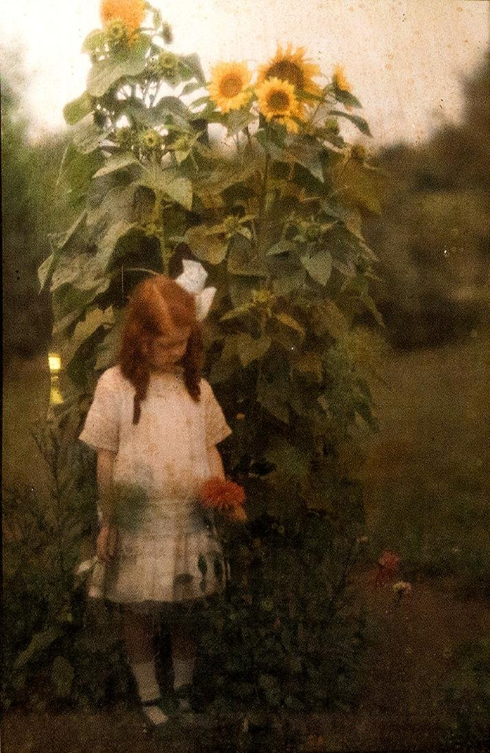 Arnold Genthe, Girl and sunflower. Autochrome