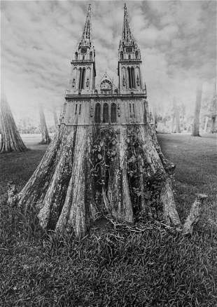 Jerry Uelsmann, Tree Cathedral, 1975,