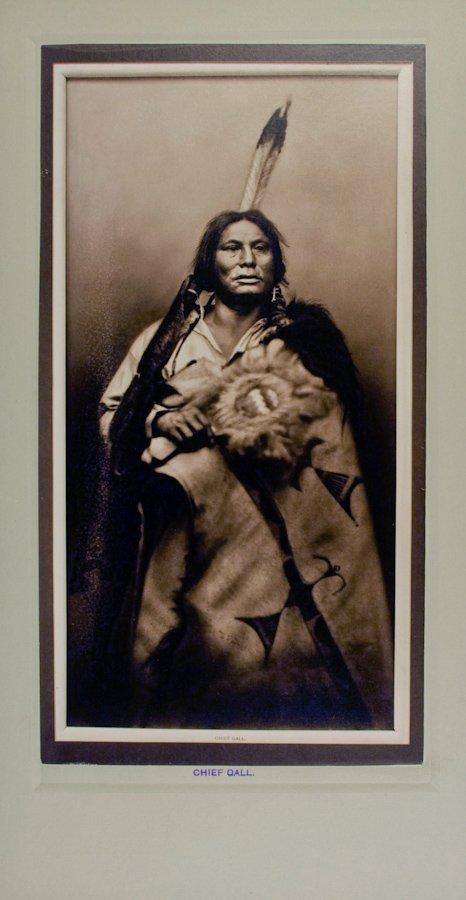CHIEF GALL (Pizi), Hunkpapa Lakota, by D. F. Barry, at