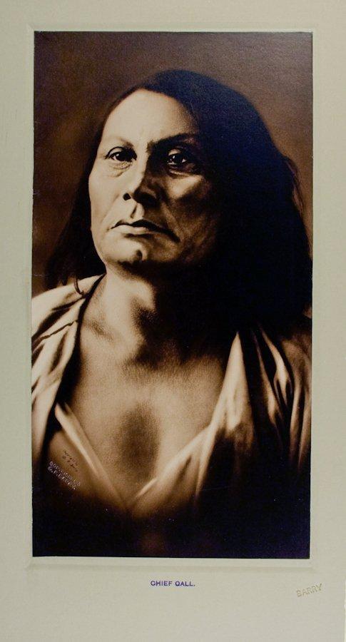 CHIEF GALL (Pizi), Hunkpapa Lakota, by D.F. Barry, at S