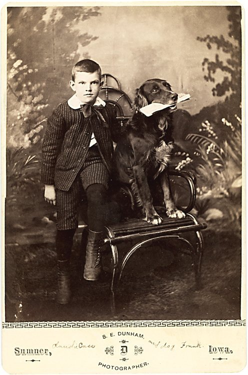 Trick dogs. 3 cabinet cards.