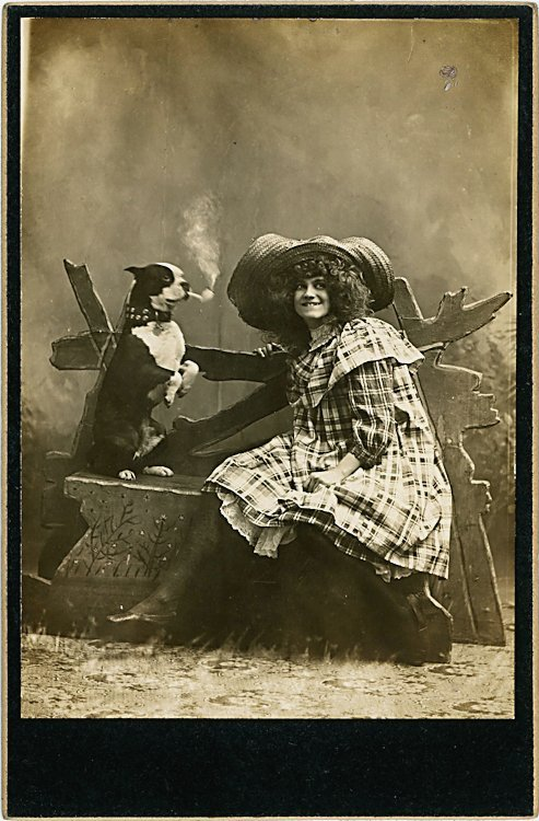 Trick dogs. 3 cabinet cards. - 2