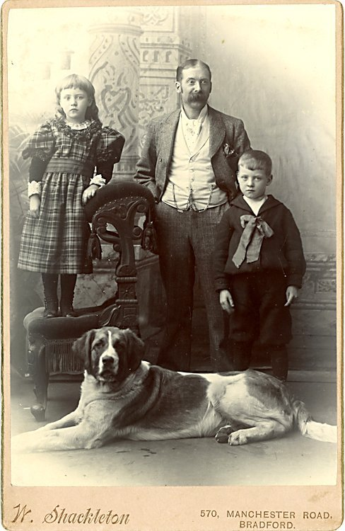 Dogs and people. 3 cabinet cards. - 3