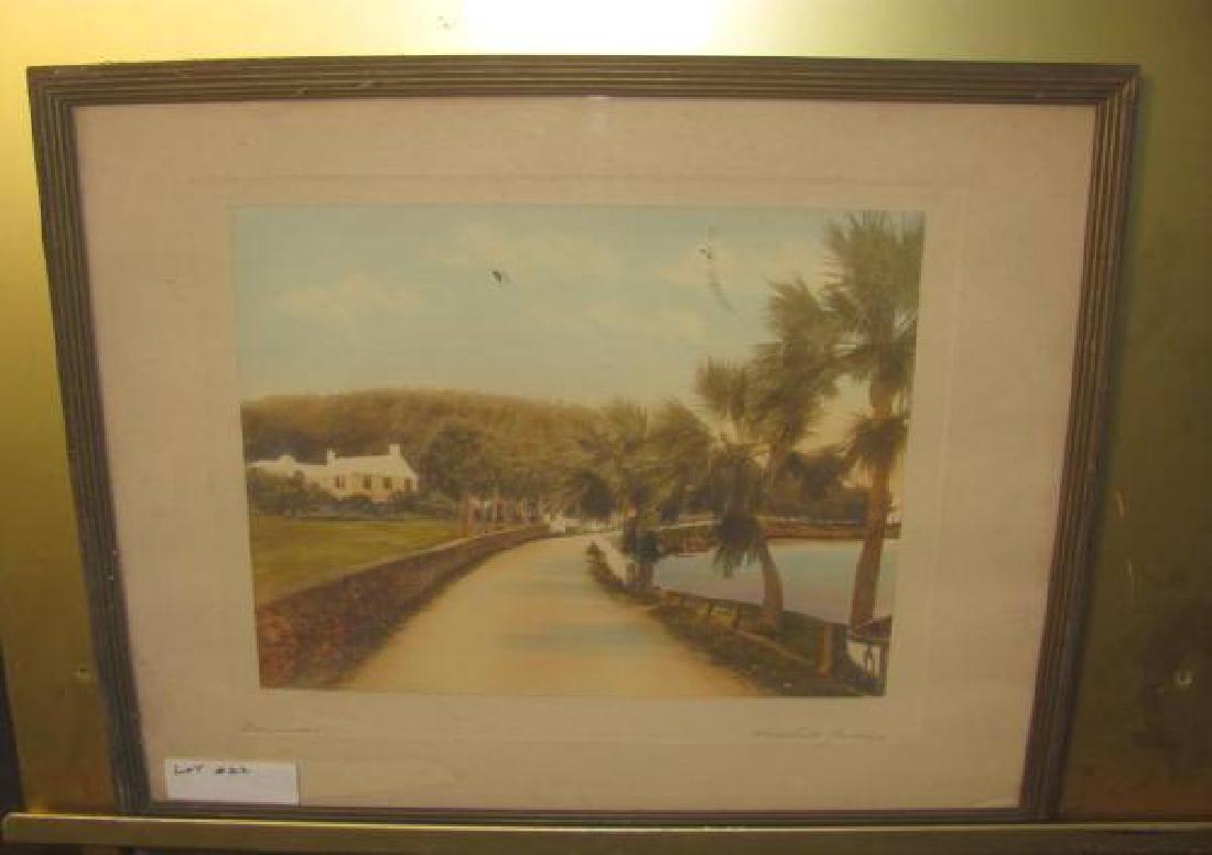 H Marshall Gardiner Bermuda Print