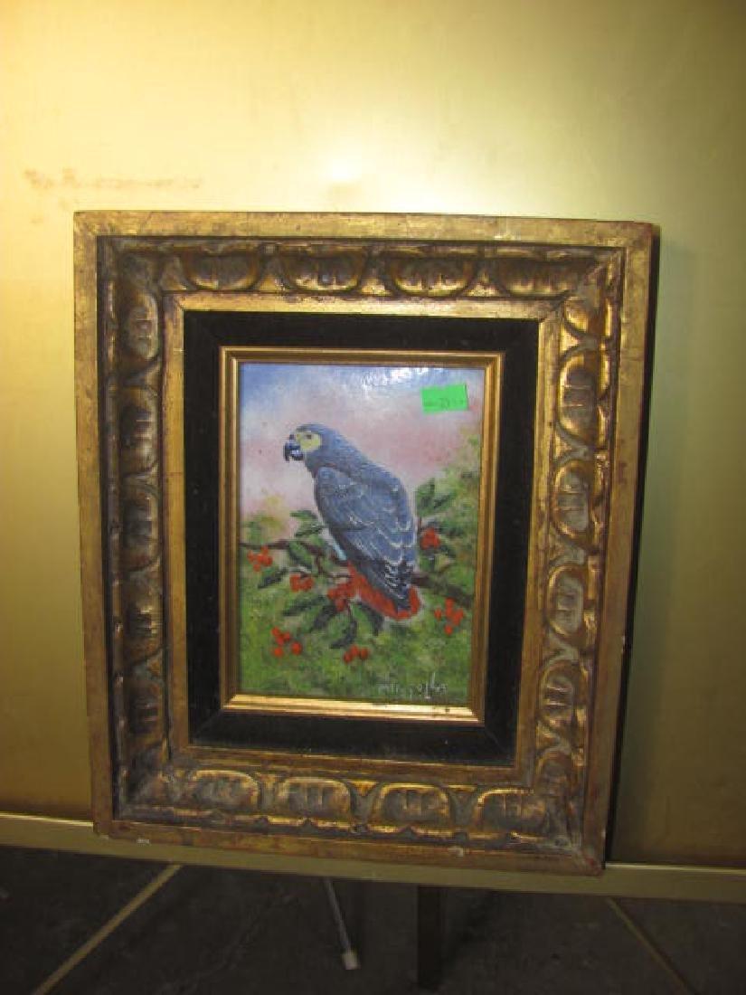 Enameled Parrot Mingolla