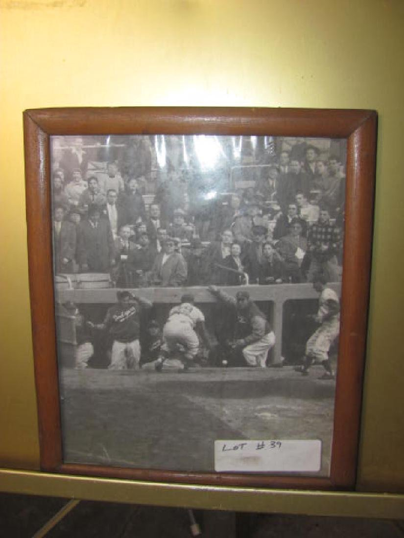 Dodgers Baseball Photo
