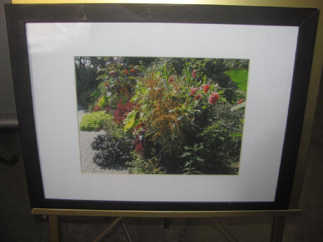 4 Richard Capuozzo Photos - 5