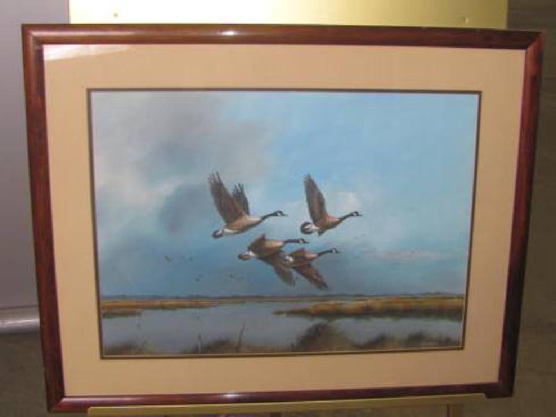 Glynn Moore Canadian Goose Print