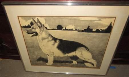 Bobby Pastorella German Shepherd Drawing