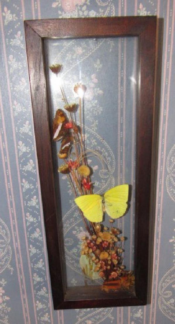 Dried Flowers Butterflies & knick knacks - 5