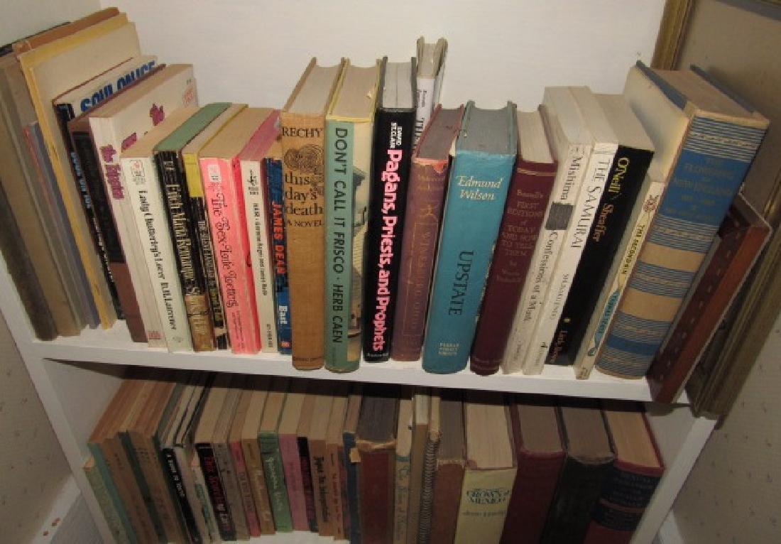 Books Insulators & Shelf Contents - 2