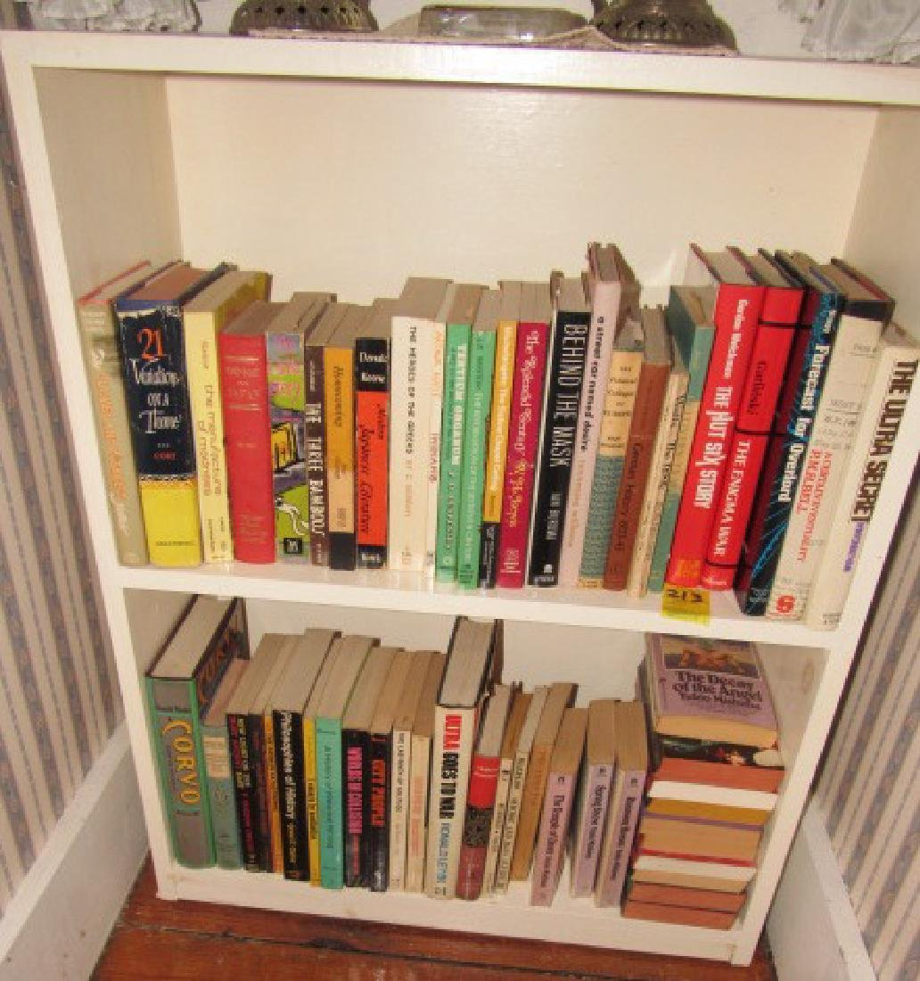Shelf & Book Lot