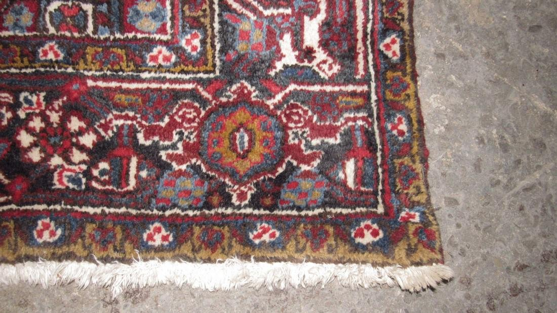 Room Size Oriental Rug - 3