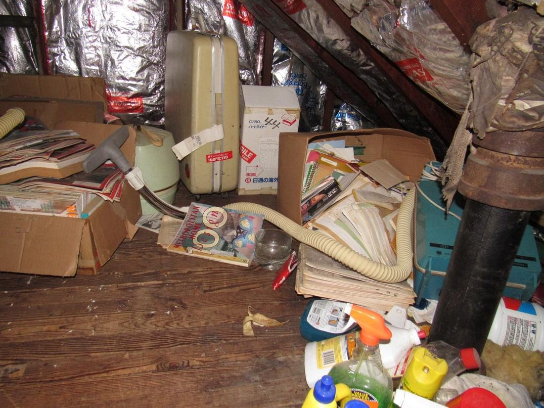 Attic Crawl Space Life Magazines & Misc
