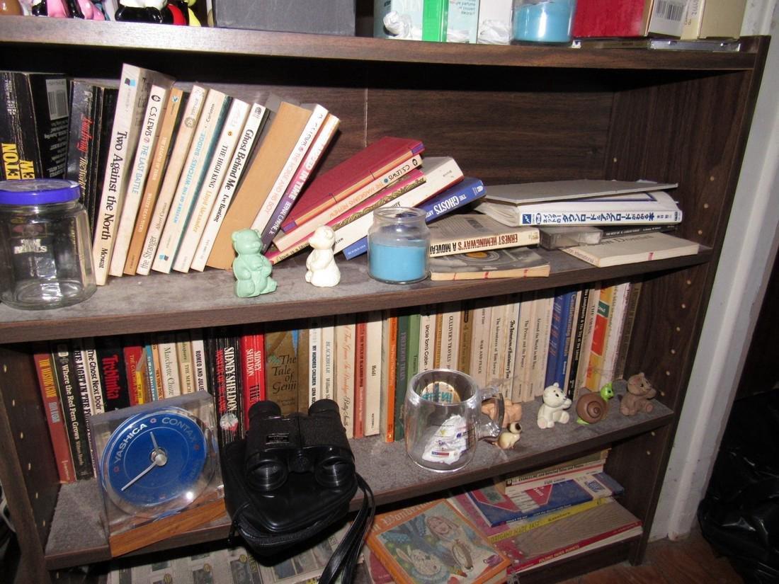 Walt Disney Japan Lamp Oriental Books Bank - 3
