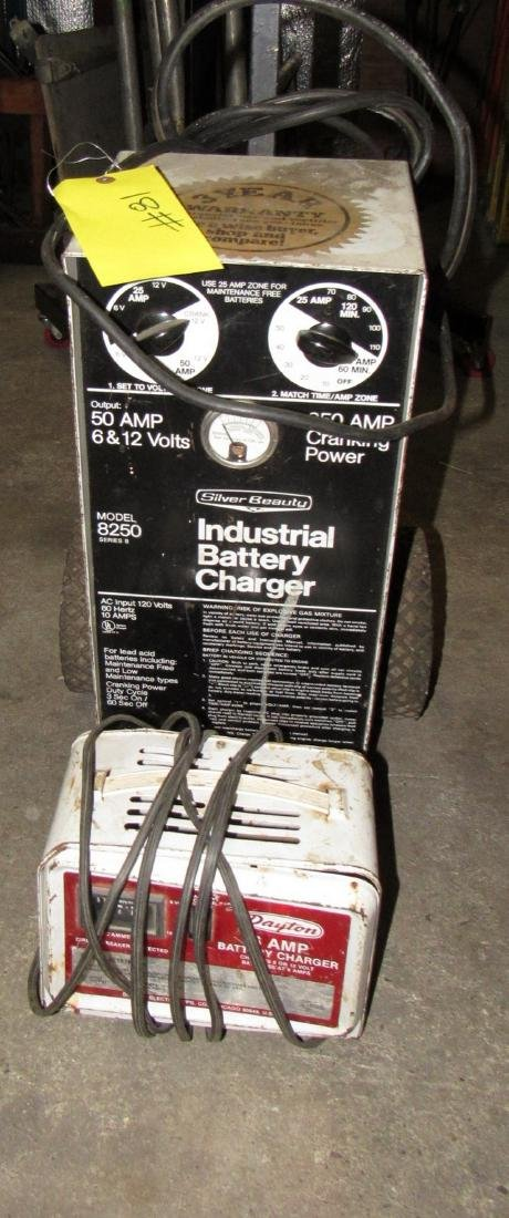 Silver Beauty Industrial Battery Charger