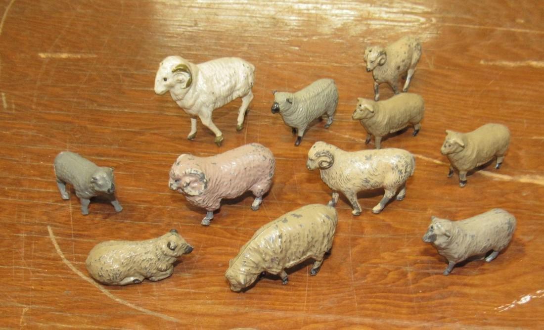 Lead Sheep