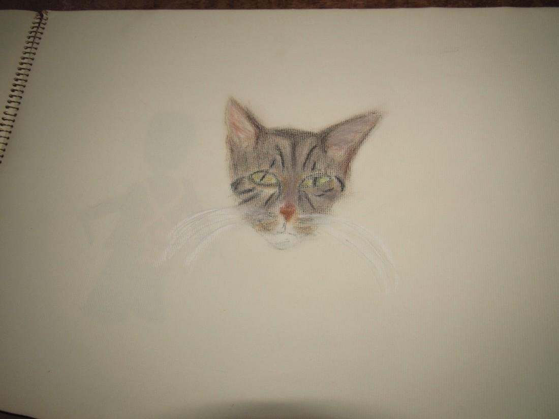 Pastel Drawings - 7