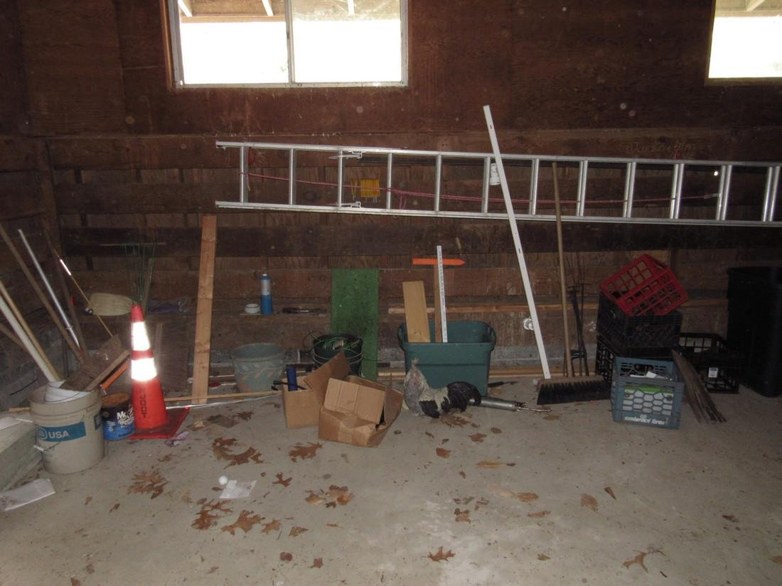 Aluminum Extension Ladder Garden Tools