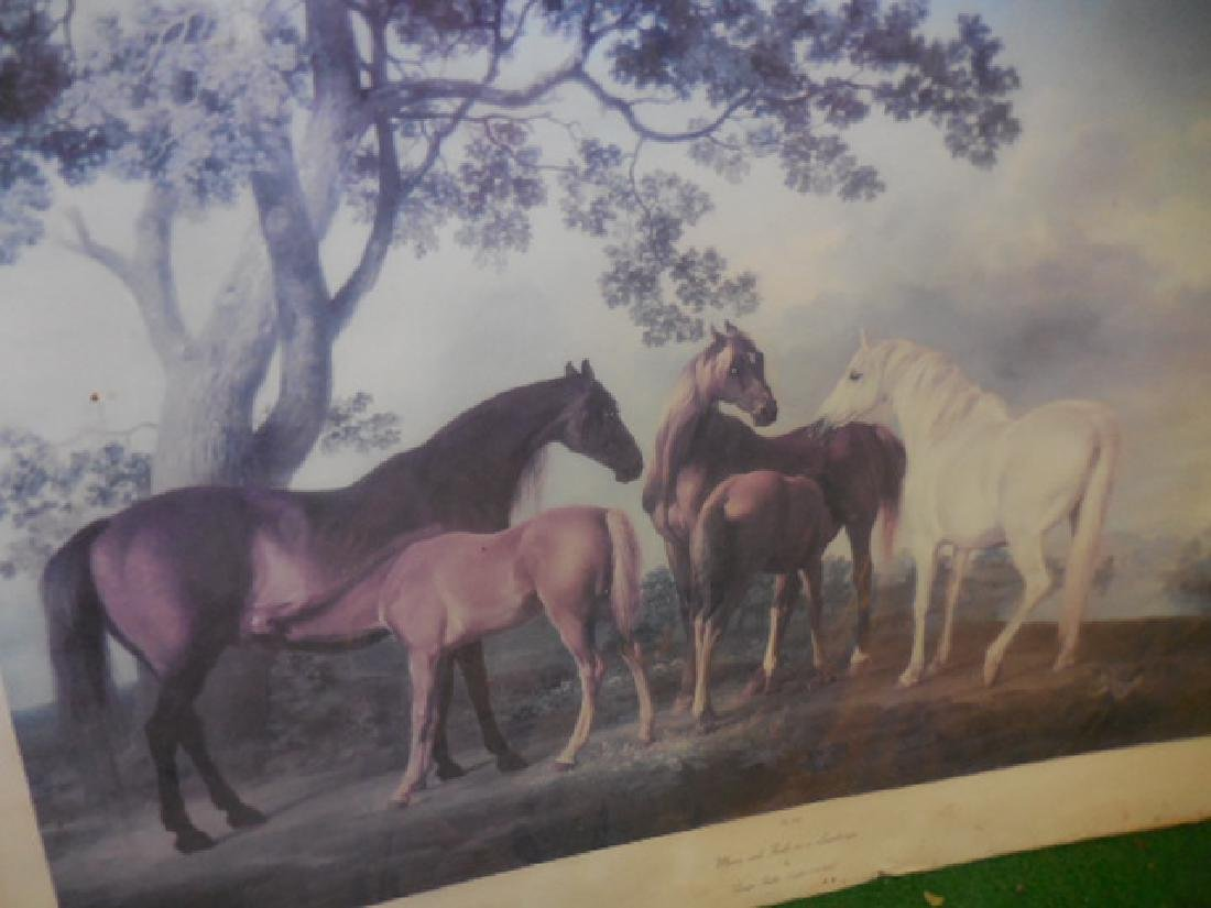 Mares and Foals Horse Print - 4